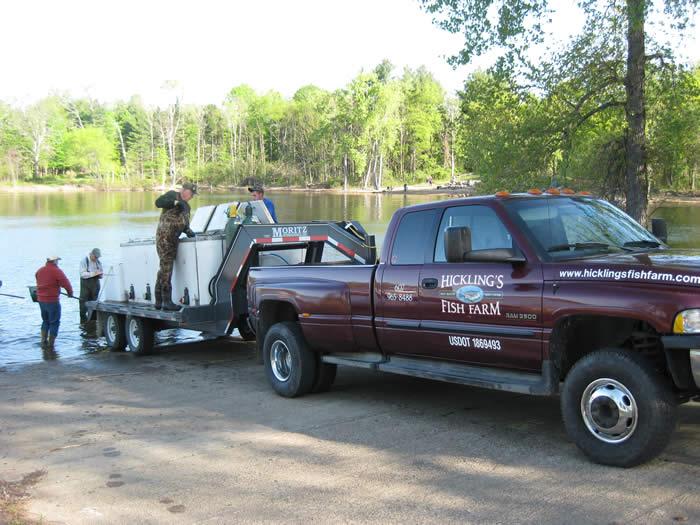 fish hauling truck